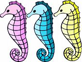 picture of seahorse  - Pink - JPG