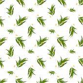 foto of eucalyptus leaves  - Vector seamless pattern with eucalyptus twig - JPG