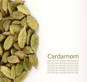 stock photo of cardamom  - Green Cardamom pods isolated on white background - JPG