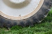 image of cultivator-harrow  - The fragment of the wheel of the tractor - JPG