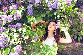 foto of lilac bush  - Woman with long brown hair in lilac bushes on a sunny day - JPG
