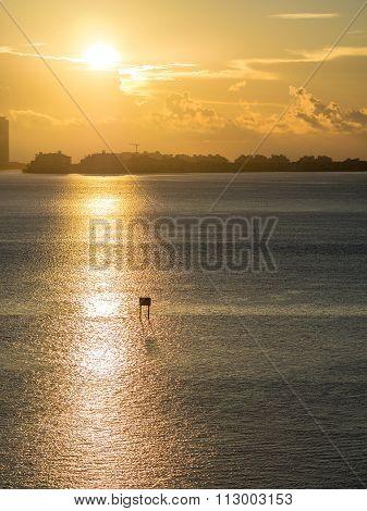 The Brickell Sunrise