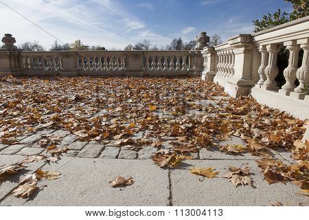 Background With Balustrade And Dry Autumn Leaves