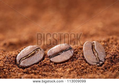 Ground Coffee Beans With Copy Space Copyspace