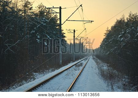 Railway in the winter forest