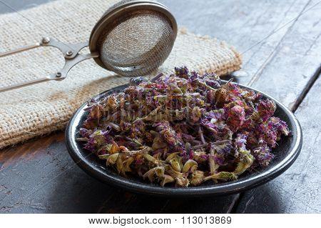 Salvia for herbal tea