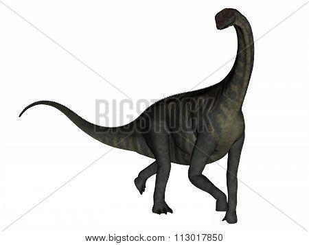 Jobaria dinosaur walking - 3D render