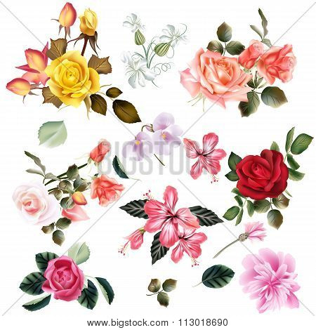 Beautiful Collection Of Vector Flowers