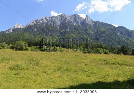 Meadow in front of the Zahmer Kaiser mountains
