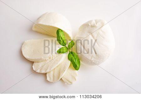 Fresh mozzarella with basil