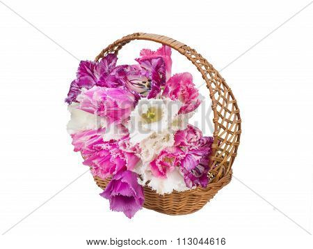 bouquet of fringed tulips in a wicker basket