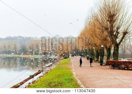 Malmo, Sweden - January 1, 2015: People Enjoy In Calming Nature And Beautiful Winter Scenes Around T