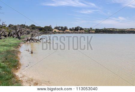 Lake Coogee Wetland Landscape