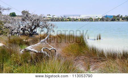 Lake Coogee, Western Australia