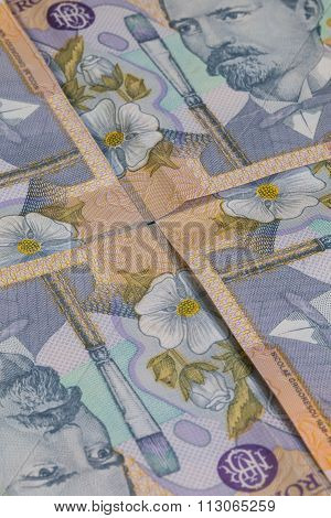Different Romanian Lei Banknotes