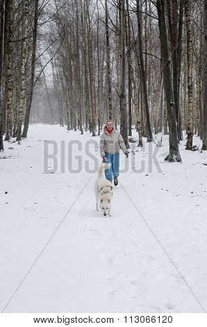 Woman With Dog Walking Down The Avenue