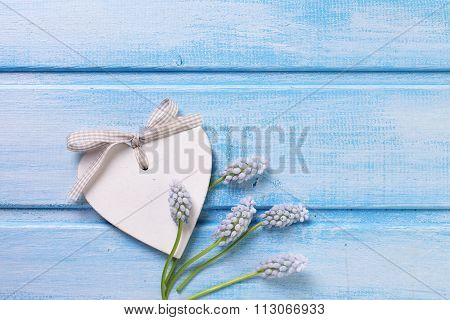 Decorative Heart And Tender Flowers Muscaries
