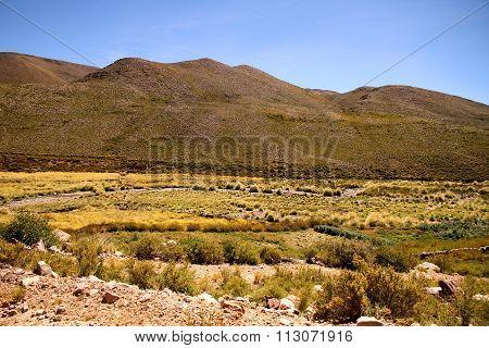 Landscape Of Jujuy..