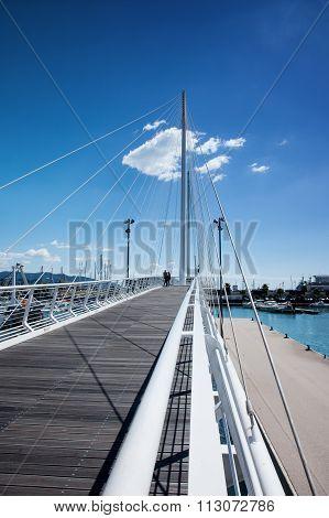 La Spezia Bridge