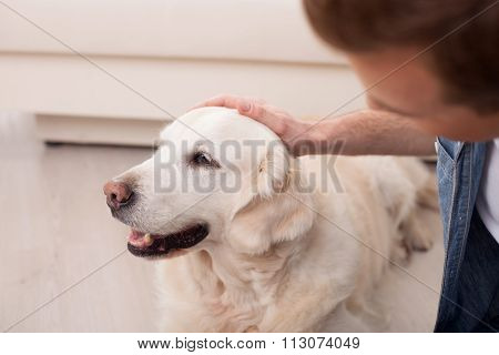 Cute young man is caring of his pet