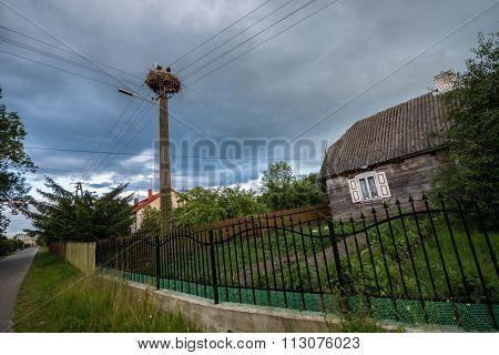 Storks Nest In Poland