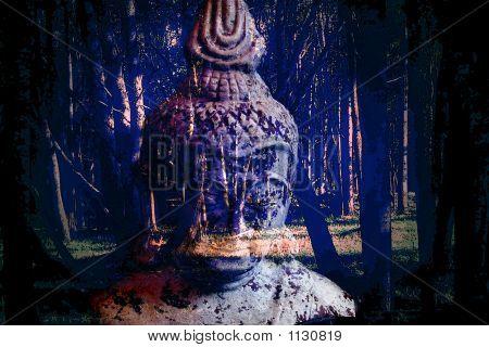 Buddah Wisdom