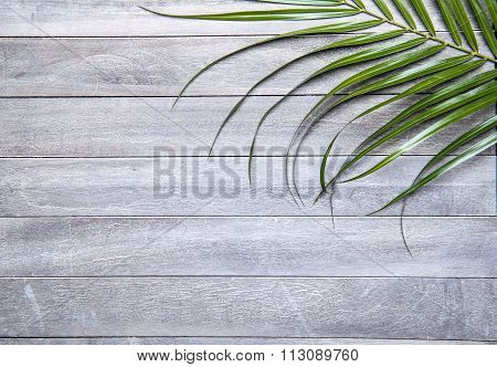 leafs on wooden background