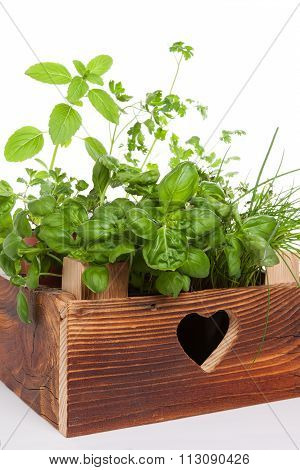 Herbs In Wooden Crate.