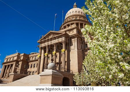 Capitol building in Boise and blooming flowers