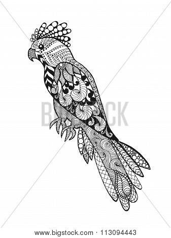 Zentangle stylized parrot.
