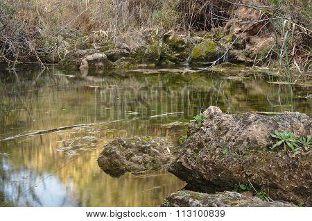 Natural Pool scenery