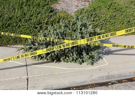An old dead dried Christmas Tree lays upon a sidewalk with a Yellow Chalk Outline and Sheriff Caution Tape marking off the Crime Scene of the end of another Christmas