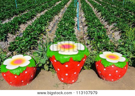 Strawberry Figure And Row Garden