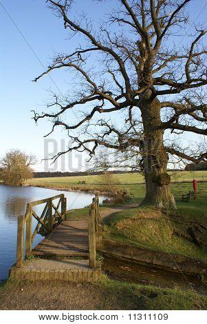 Wooden bridge in English landscape garden