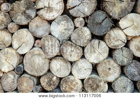 Stow Of Firewood Just Before Winter