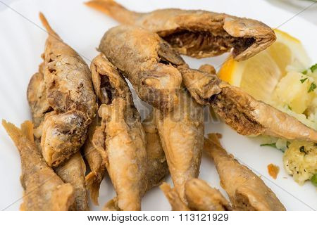 Fried Scads Fish On The White Plate
