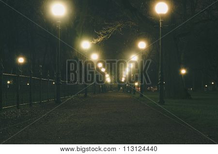 Night Park Alley Illuminated By Lampposts