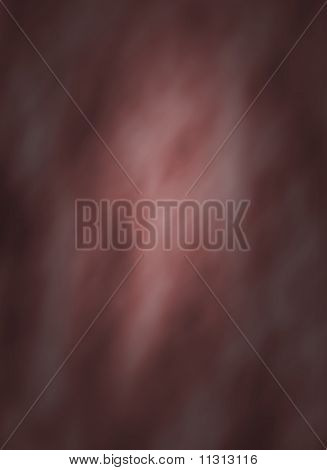 Digital Background Muslin