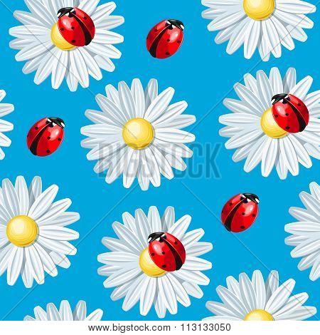 Ladybug and camomile seamless
