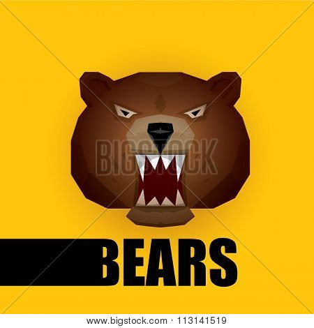 vector cartoon bear. grizzle icon. bear muzzle