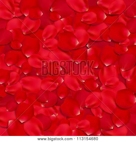 Background with red rose petals.