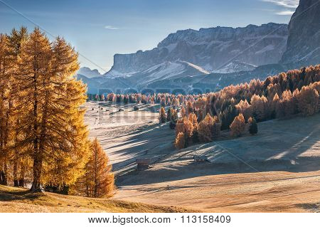 Mountan In Alpe De Siusi
