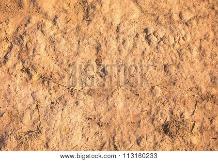 soil texture ,dirt road in nature