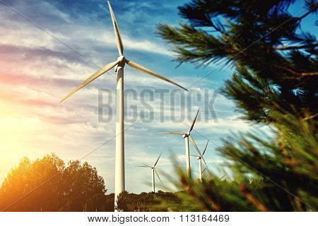 Alternative energy resources windmill in field at evening
