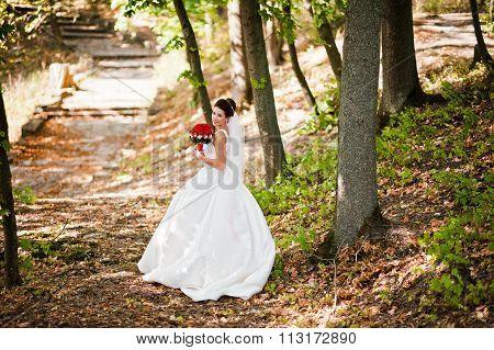 Elegant Brunette Bride With Long Veil At The Forest
