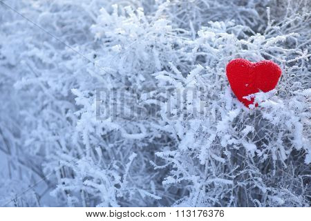Hand Made Heart Shape In The Winter