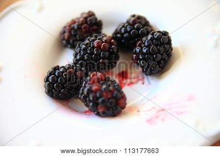 Juicy fresh blackberries on decorative dish