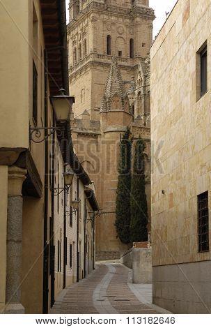 Cathedral Of Salamanca,castilla Y Leon,