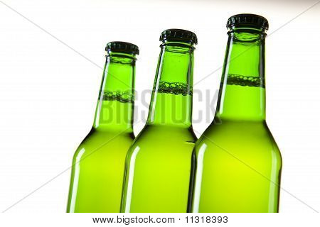 Beer in green bottles