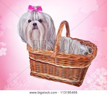 Cute shih tzu dog with pink bow sitting in basket. Soft pink floral background.